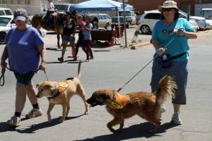 TSAS Shelter Dogs, Maya with Joy VanVeen, Lex with Vanessa Burelli