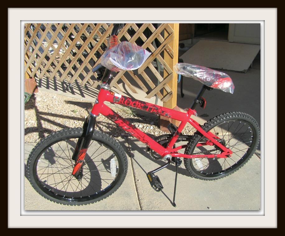 "20"" Boys Huffy Bike"