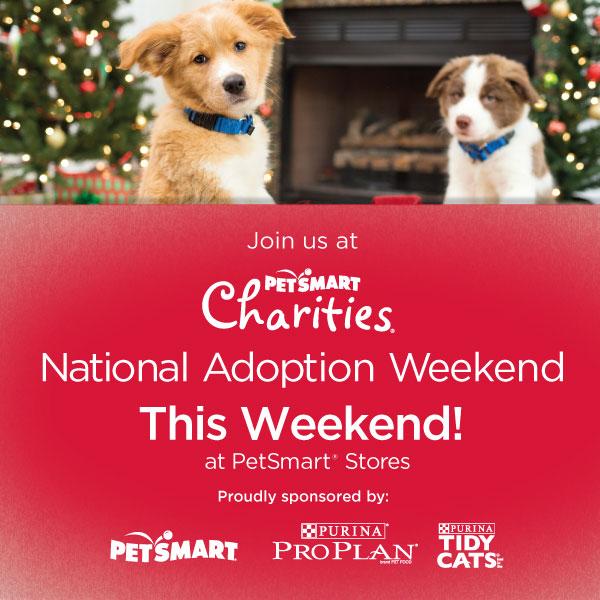 Petsmart Dog Adoption Fee