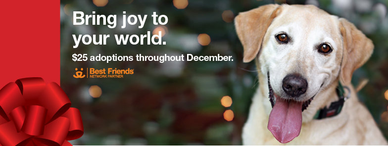 FB Event Cover 784x2952_Dog